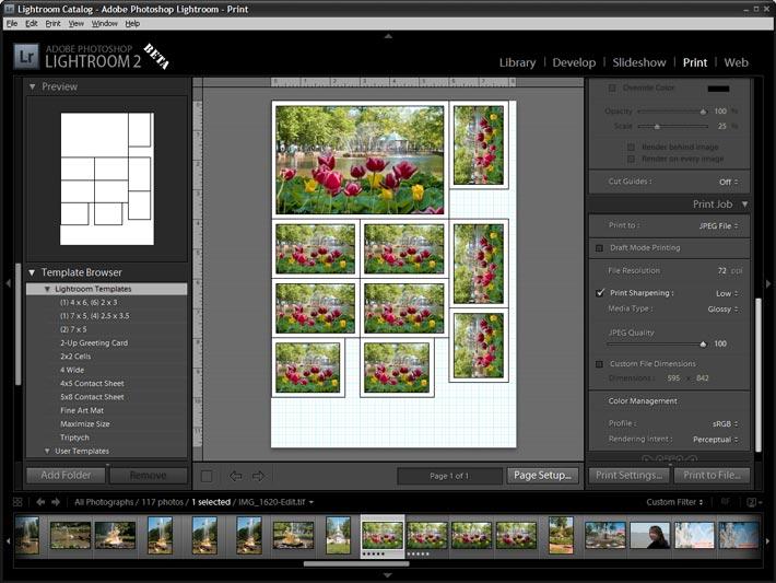 Как сделать на листе несколько фото в